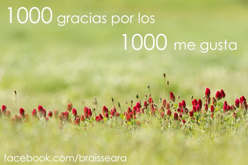 ©Brais Seara