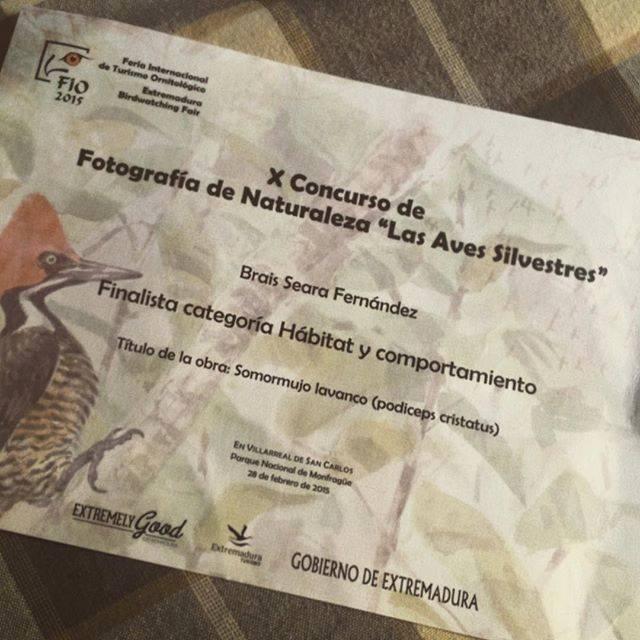 Diploma, Finalista Fio 2015.